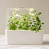 Click & Grow Plant Refill Cartridge
