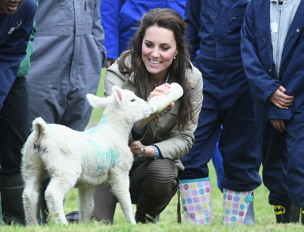 Kate Middleton Puts Her Farming Skills to Work by Feeding a Little Lamb