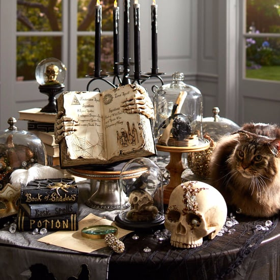 Halloween Decorations From Pier 1 Imports