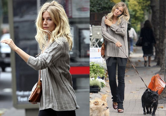 Photos of Sienna Miller and Mother Walking Dogs