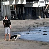 Josh Hartnett hangs with his dog and Amanda Seyfried on the beach in LA.