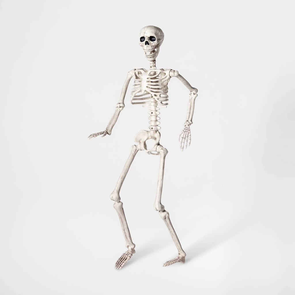 Medium Posable Skeleton