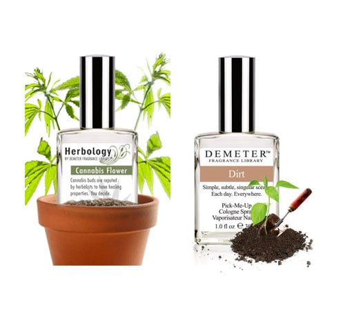 Earthy Aromas