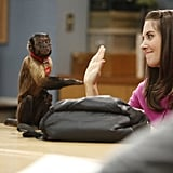 Annie's Boobs (I am referring to the monkey) and Annie (Alison Brie) high-five.