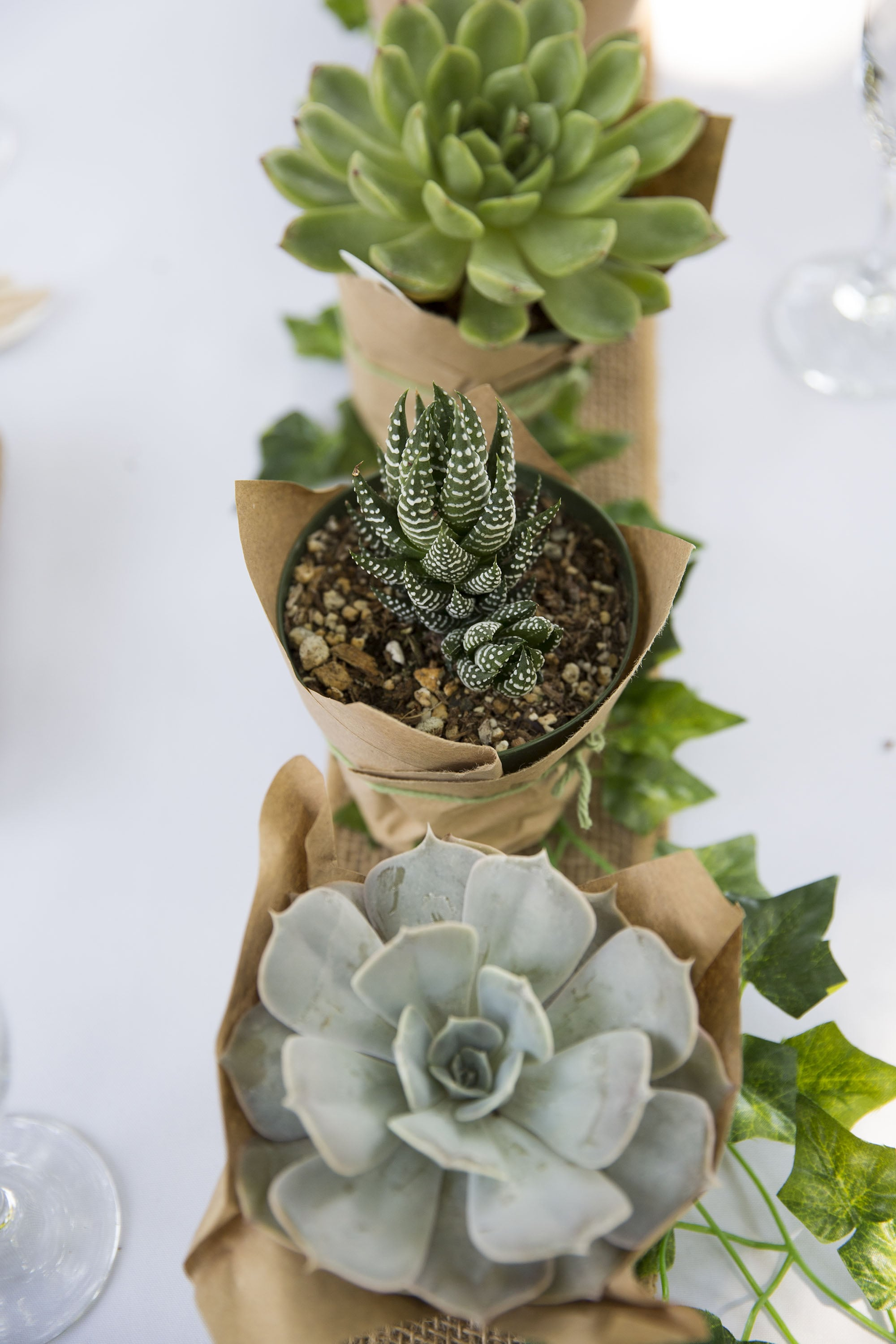Succulent Centerpieces 61 Cactus Baby Shower Photos We Re Totally Stuck On Popsugar Family Photo 11