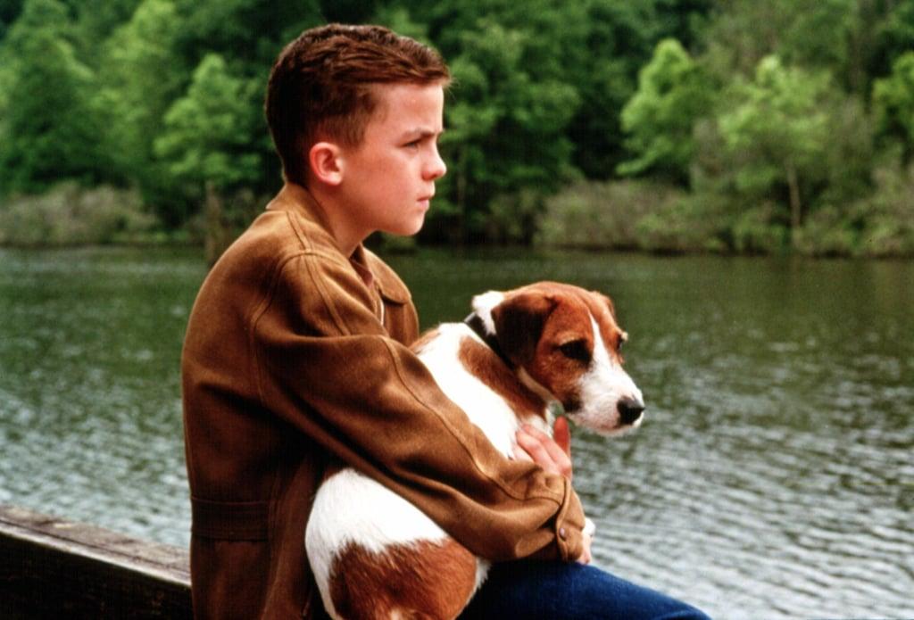 My Dog Skip: Skip's Final Resting Place