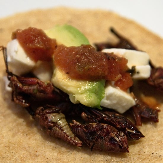 SF Health Department Bans Sale of Grasshopper Tacos