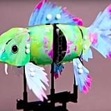 Splash Koi Model