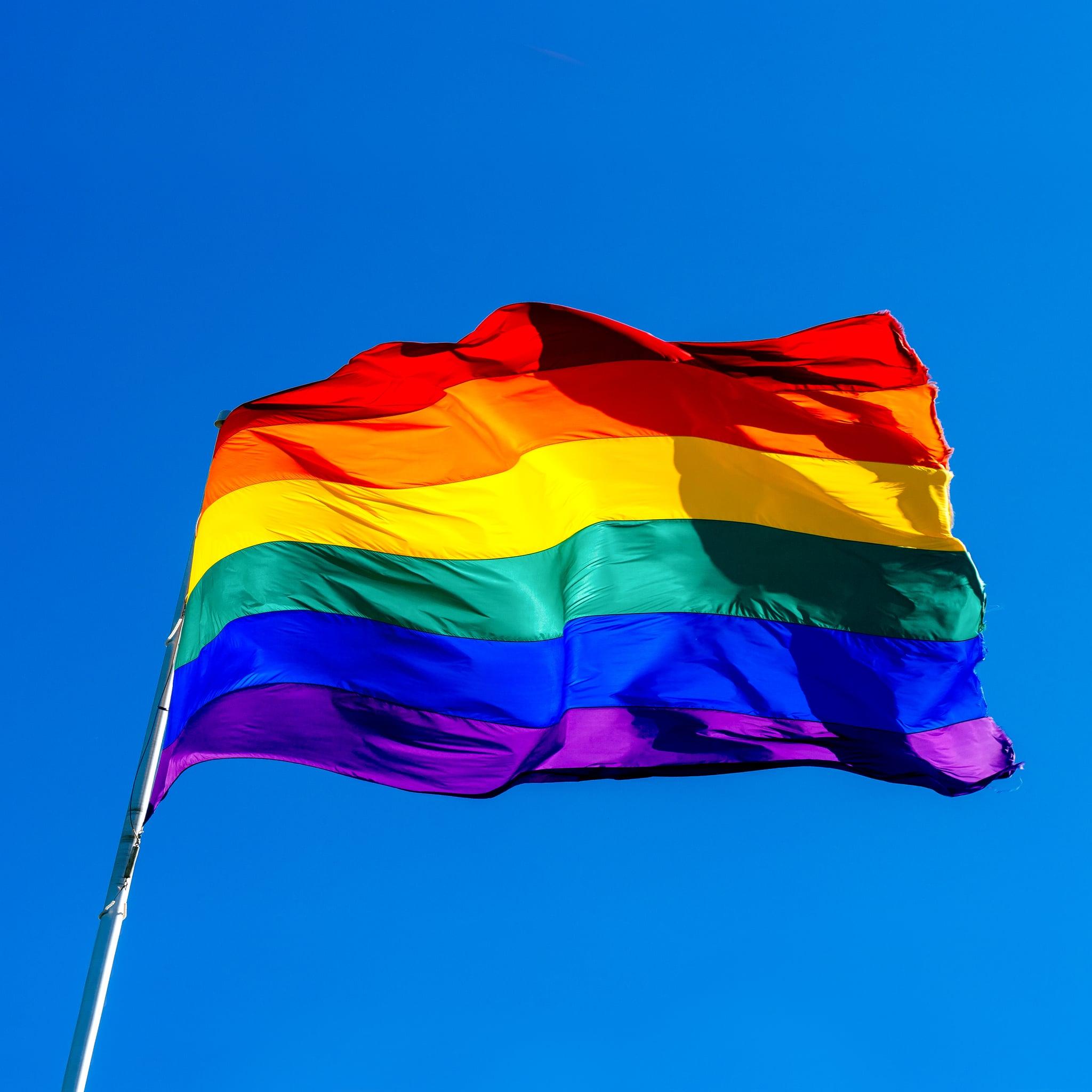 Best Pride Month Zoom Backgrounds Popsugar Tech