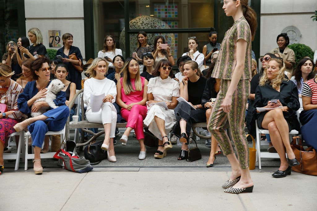 Dogs Sitting Front Row at Fashion Week Spring 2017