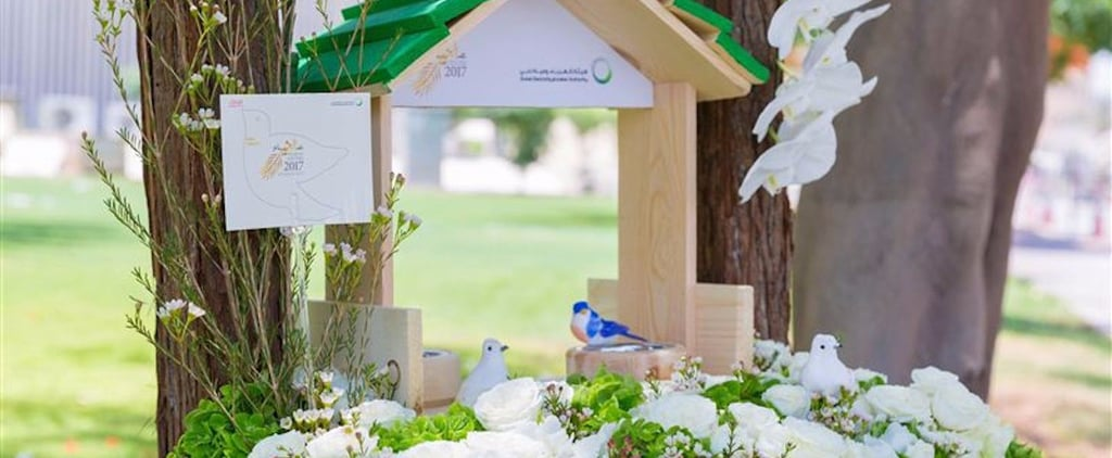 These Cute Bird Baths Are About to Take Over Your Social Media Feeds