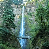 Just a short 30-minute drive outside of Portland is where you'll discover the infamous Multnomah Falls. This magnificent 600-foot waterfall allows you to experience the powerful force of Mother Nature up close and at ease. It is without a doubt one of Oregon's most recognizable waterfalls, and chances are you've probably already seen it a time or two on Instagram.  Make sure to arrive at the falls early though. Because the base of the waterfall is only a five-minute walk from the road, it doesn't take long before clusters of crowds flock to this neck of the woods.