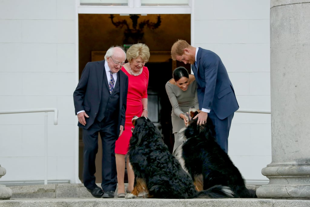 It's plain to see Meghan and Harry are dog people, simply by how excited they were to play around with President Michael Higgins's pups in Ireland.