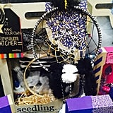 Seedling Dream Catcher Kit