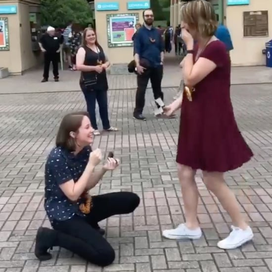 Couple Proposing to Each Other at Memphis Zoo Video 2018