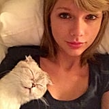 Taylor Swift's selfie with her cat, Meredith, scored the ninth spot in Instagram's most liked photos of the year.