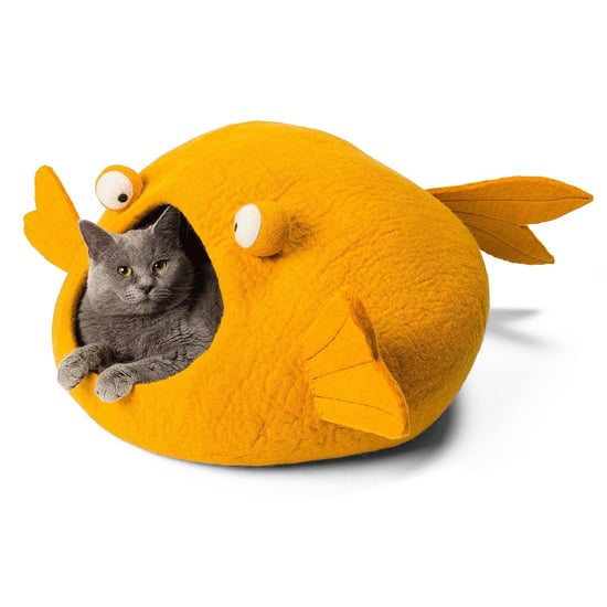 Cat Beds on Amazon