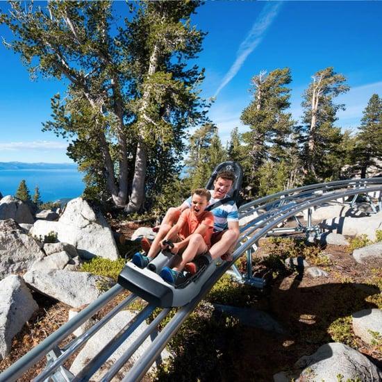 Ridge Rider Mountain Coaster in Tahoe