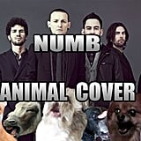 Linkin Park — Numb
