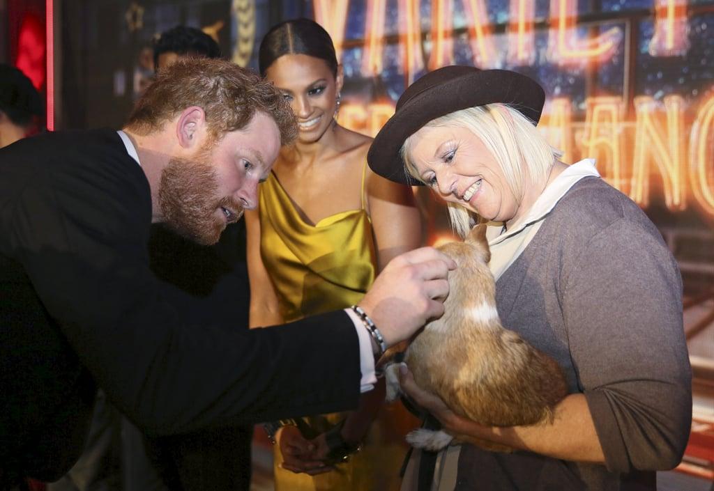 في عام 2015، خرق الأمير هاري البروتوكول الملكيّ عندما داعب كلباً خلال حدث Royal Variety Performance.