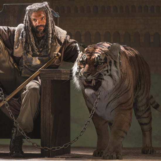 What Happens to Shiva in The Walking Dead Comics?