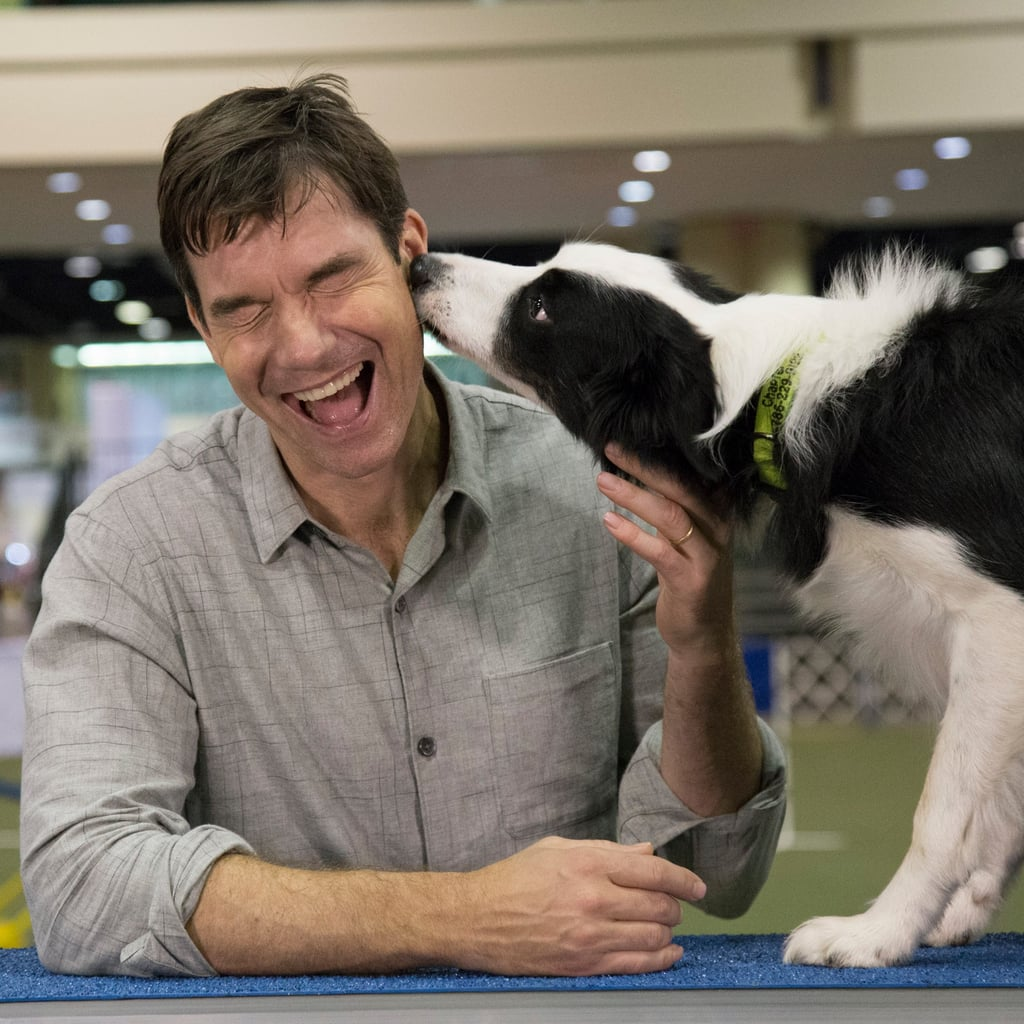 Jerry O'Connell at AKC National Championship Dog Show