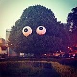 Even the trees got accessorized! Source: Instagram user kateschweitzer