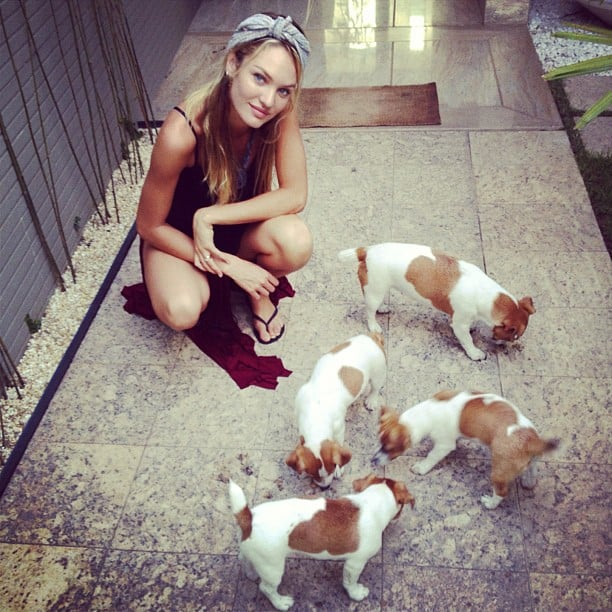 Candice Swanepoel spent time with her puppies. Source: Instagram user angelcandices
