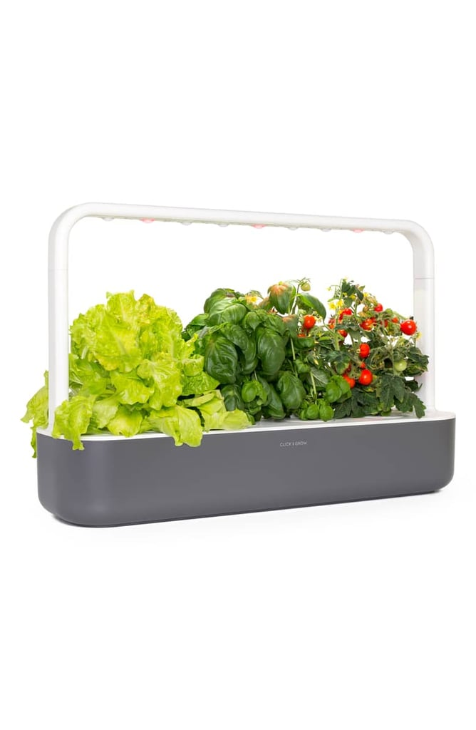 Click and Grow Smart Garden Self Watering Indoor Garden