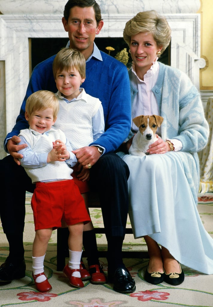 Prince Harry Poses For a Family Portrait in December 1986