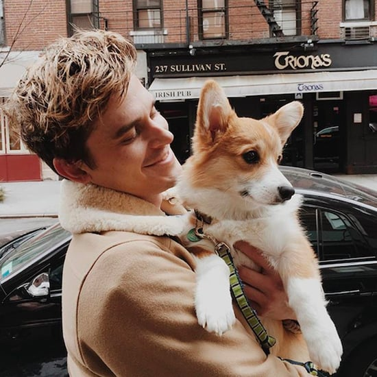 Pictures of Antoni Porowski With Dogs