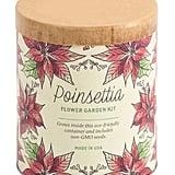 Poinsettia Wax Planter Grow Kit