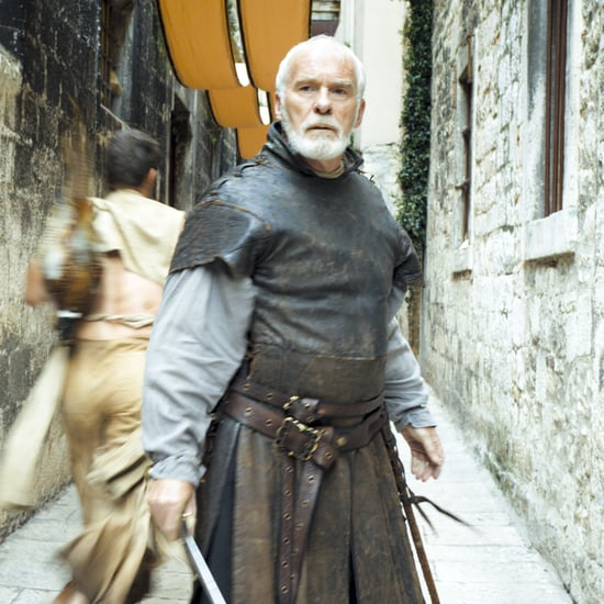 Ser Barristan Selmy on Game of Thrones Series Finale