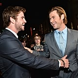 Liam and Chris joked around together at the November 2013 premiere of Thor: The Dark World in LA.