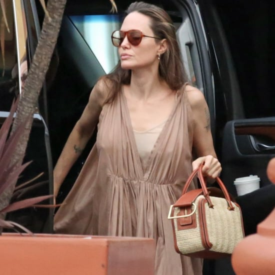 Angelina Jolie Delvaux Woven Box Bag 2019
