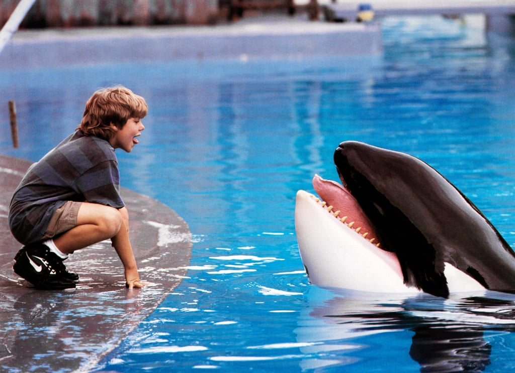 Free Willy (1993)