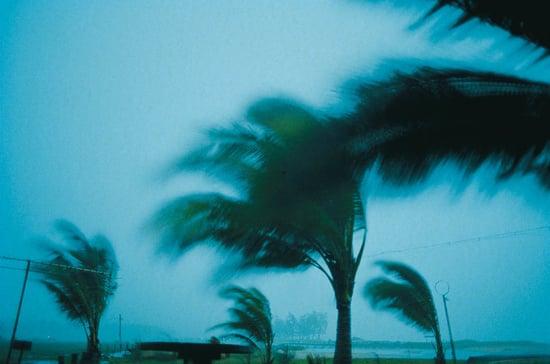 Have You Been Through a Hurricane?