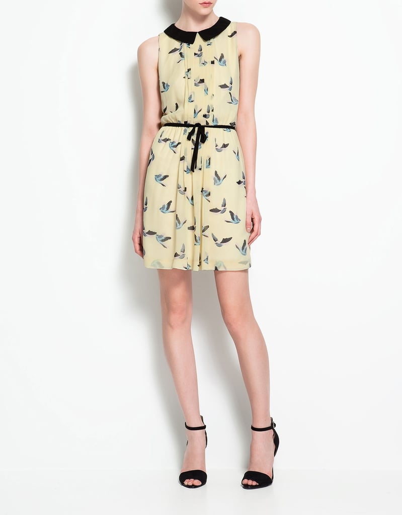 Everything from the sweet collar to the whimsical bird print feels utterly pretty.  Zara Contrasting Collar Dress ($60)