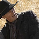 Probably: Ed Harris as the Man in Black