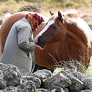 Queen Elizabeth II Feeding Her Horses in Scotland 2018