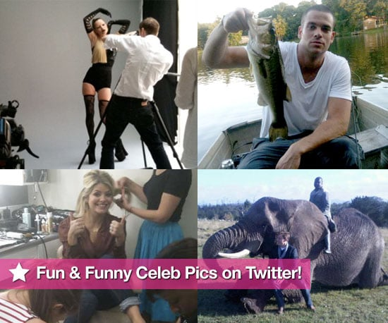 Pictures From Celeb Twitter Accounts Including Russell Brand,  Ashlery Greene, Agyness Deyn, Kate Moss and More