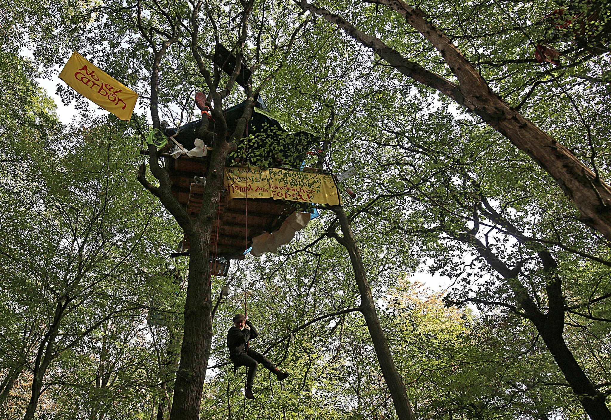 Help Your Kids Build A Tree House 109 Random Acts Of Kindness