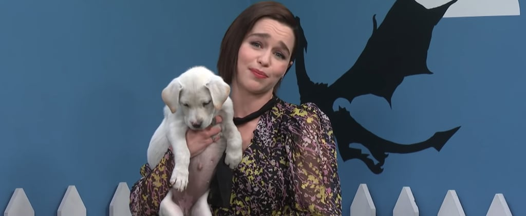 The Late Show's Rescue Dog Rescue Video With Emilia Clarke