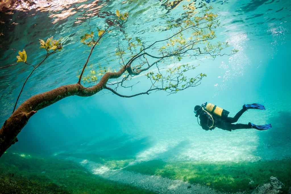 Drop Everything and See the Stunning Winners of the NatGeo Photo Contest