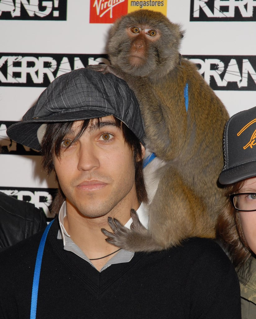 Pete & His Pet Monkey, Ashlee