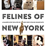 "Felines of New York ($15) is a brilliant parody of the well-known Humans of New York, and it's way more furry. The back cover of the book sums it up well: ""They are proof that behind every New Yorker, there lies a cat just waiting to destroy their Ikea futon and then eat their faces off when they die."""
