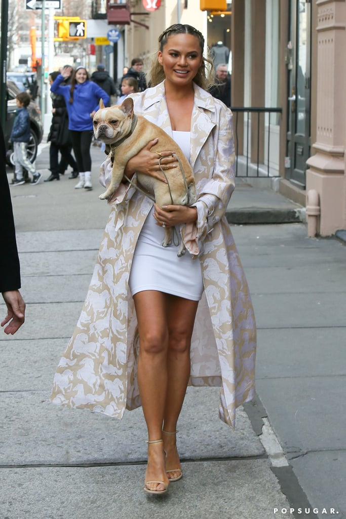 "Chrissy Teigen and her adorable French bulldog were spotted out on a sunny stroll in NYC on Sunday. The mother-to-be looked carefree and relaxed as she carried her dog and made her way into a black SUV. Chrissy recently appeared on Watch What Happens Live's 1,000th episode and finally explained what was going through her face during that confused Stacey Dash Oscars moment, saying, ""It was so cringeworthy. I ain't got no poker face."" She also popped up on The Late Show With Stephen Colbert and revealed that she asked Barack Obama for baby-name advice. Read on for more of Chrissy's outing, and then see why she specifically chose to have a baby girl."