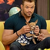 Kellan Lutz cuddle with an itty-bitty dog on Wednesday, while he was on the Miami set of Despierta America.