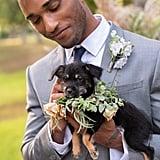 Adopt a Shelter Dog Wedding Ideas