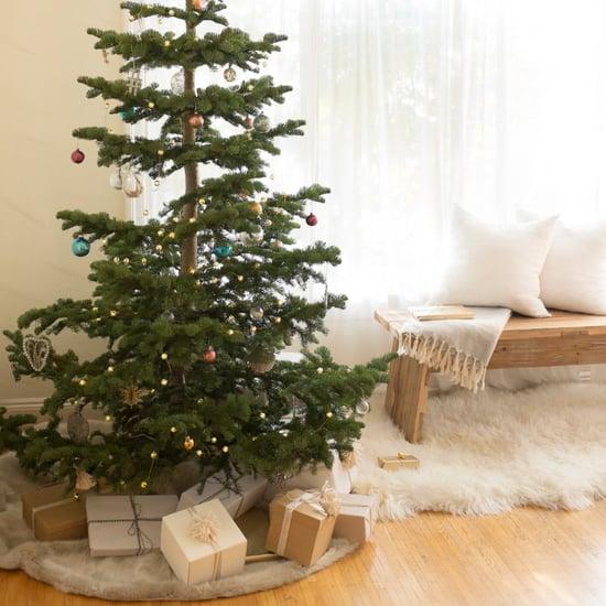 أفضل أشجار عيد الميلاد المجيد على وجه الأرض
